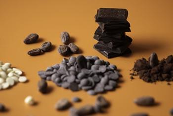 Cata-taller de xocolata